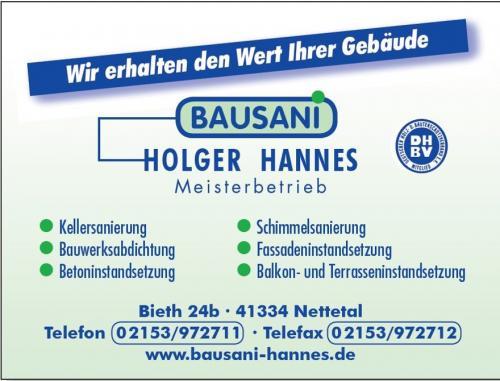 Bausani Holger Hannes